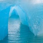 USA; Alaska; Endicott Arm; blue icebergs