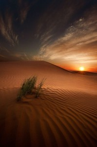 Представьте, что вы застряли в пустыне, где нет больше никого и ничего кроме вас и ваших мыслей...