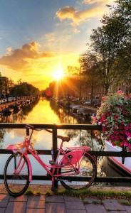 Почему Амстердам?